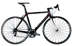 Focus Cayo 2.0 cp Ultegra