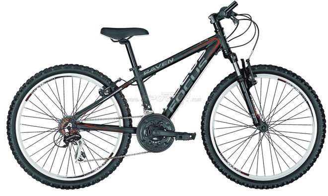 "Focus Raven Rockie 24"" Jr kaufen in Online Shop MTB Hardtail  - Sportler"