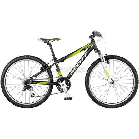 Scott Scale 24 Jr Green kaufen in Online Shop MTB Hardtail  - Sportler