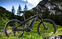 Trek E-Mountainbike