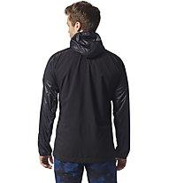 Adidas TERREX Agravic Alpha Hooded Shield - Windjacke Trailrunning - Herren, Black