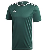 adidas Entrada 18 Jersey - Fußballtrikot - Herren, Green/White