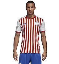 Paraguay Home 2018 maglia da calcio uomo