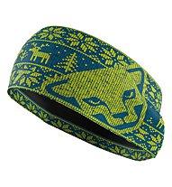 Dynafit Performance Warm - Stirnband Skitouren, Blue/Green