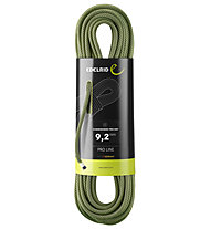 Edelrid Hummingbird Pro Dry 9,2 - corda singola, Dark Green