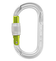 Edelrid Oval Power 2500 Screw - moschettone, Silver