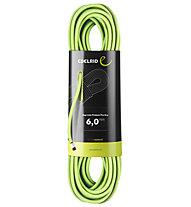 Edelrid Rap Line Protect Pro Dry - Kletterseil, Green