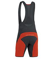 GORE BIKE WEAR Alp-X Pro 2in1 - pantaloni bici - uomo, Red