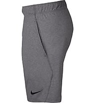 Nike Dri-FIT Training Shorts - Trainingshose kurz - Herren, Grey