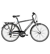 Pegasus Bicicletta trekking uomo Piazza (2016) 21 rapporti, Grey matt