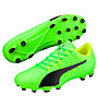 Puma evoPower Vigor 4 AG - Fußballschuh für Kunstrasen, Green/Black