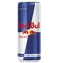 Red Bull Energy Drink 250 ml - bevanda energetica, Silver/Blue