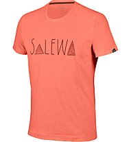 Salewa Frea Graph Dry M S/S Tee Herren T-Shirt, Orange