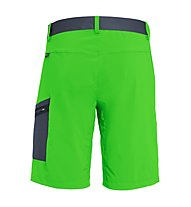 Salewa Pedroc Cargo 2 DST - pantaloni corti trekking - uomo, Light Green