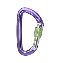 Wild Country Session Screw Gate - Karabiner, Purple/Green